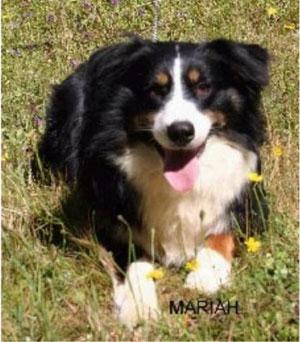 touchstone-mariah-down
