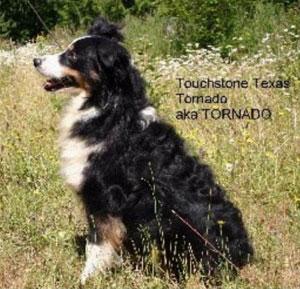 touchstone-tornado-sit-side