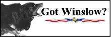 Winslow-logo-gotWinslow-xsm