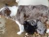 luca308-4-16-feeding
